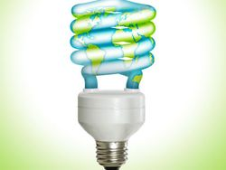 CF Bulb